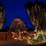 Holiday Events in Point Loma